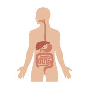 Ulcerative colitis & Crohn's Disease treatment in Atlanta